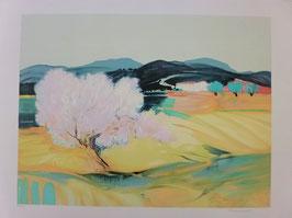 Claude Hemeret - Paysage de Provence