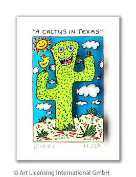 A CACTUS IN TEXAS