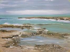 Georges Laporte - La côte sauvage