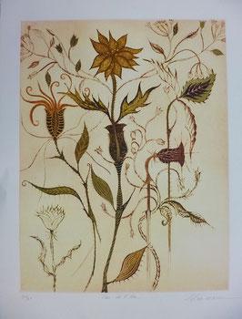 Schumann - Clau de Fleur
