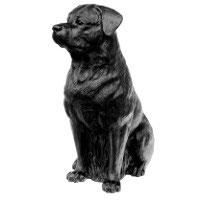 Rottweiler, 2005