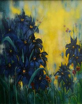Alwin Baur - Iris