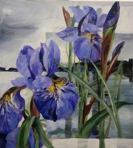 Gerda Nietzer - Iris