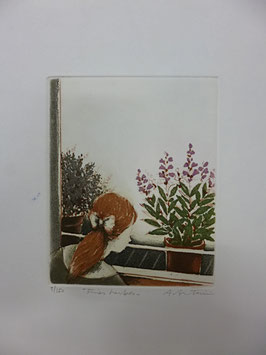 Annapia Antonini - Fines herbes