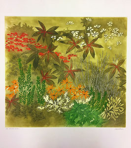 Anne Walker - mixed border