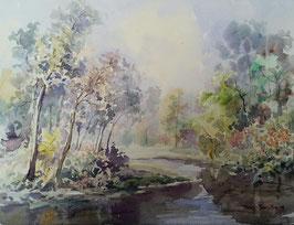 Tony Tongterm - Fluss im Wald