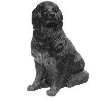 Wagners Hund Russ, 2004 (Neufundländer)