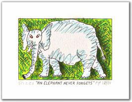 Rizzi - AN ELEPHANT NEVER FORGETS