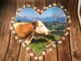 Kissenmotive Simmentaler Kuh und Steinbock