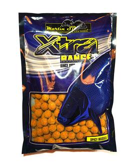 Xtra Range Spicy Masala