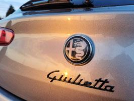 Alfa Romeo Carbon  Emblem Replace