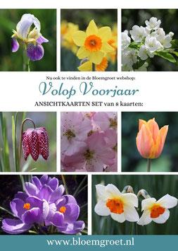 Volop Voorjaar- set