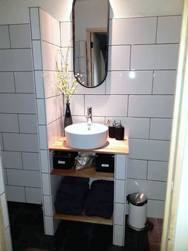 105 x 280 cm: douche-wastafel-toilet