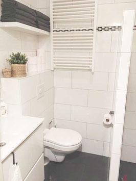160 x 195 cm: douche-wastafel-toilet