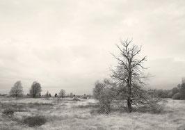 Ort der Stille #A28