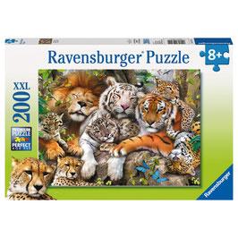 Puzzle Schmusende Raubkatzen 200 Teile
