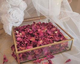 Pétales de rose séchés