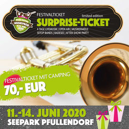 SURPRISE FESTIVAL TICKET MIT CAMPING