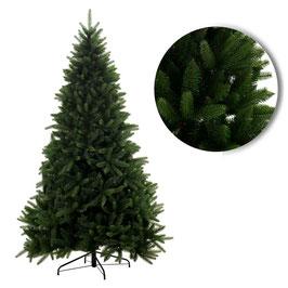 alberi Maxi