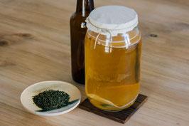 APRENDE A HACER KOMBUCHA (Primera fermentación)