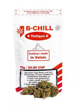 B-Chill Harlekin