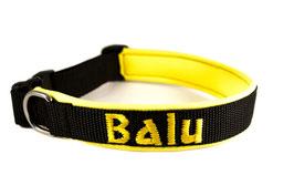 Klickhalsband bestickt schwarz-gelb