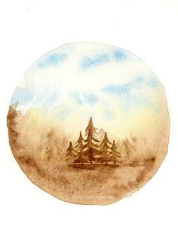 Sonnenwald