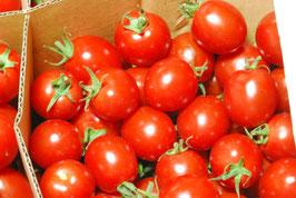 自然農法のミニトマト「キャロル7」 2kg(税別・送料無料 沖縄離島を除く)