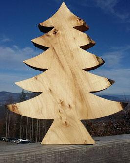 Baum Zirbe