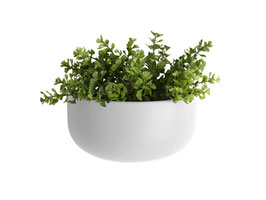 Wall Plant Pot weiß breit