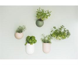 Wall Plant Pot weiß oval