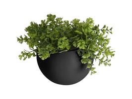 Wall Plant Pot schwarz