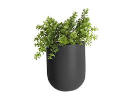 Wall Plant Pot schwarz oval