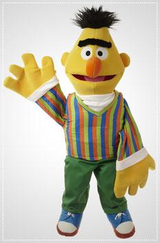 Bert SE301