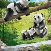 70353 Pandas mit Baby
