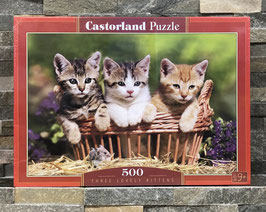 Three lovely Kittens