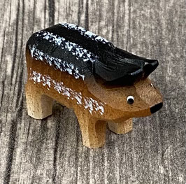 Wollenschwein Ferkel