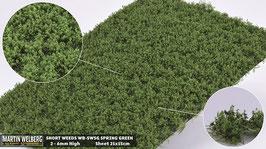 WB-SWSG spring Green jeweils pro Stck. 21x15cm und 2-6mm Hoch