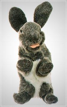 Kleines Kaninchen W076