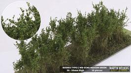 WB-SCMG medium Green je 10 Stck. 30-50mm Hoch