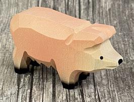 Hausschwein Piggy