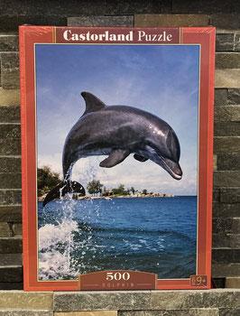 Dolfhin