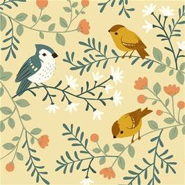 Birch Vögel