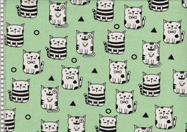Katzen mint