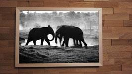Affrontement de géants - 40 x 60 cm + CADRE