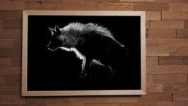 Hyène brune 1 NetB - 40 x 60 cm + CADRE