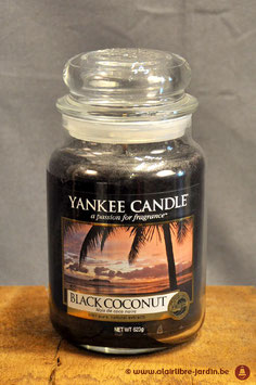 Black Coconut YK