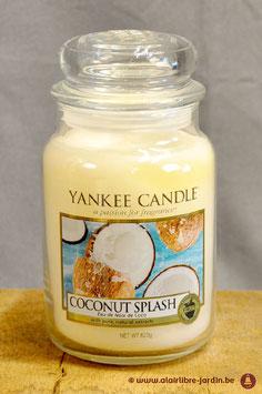 Coconuts Splash YK