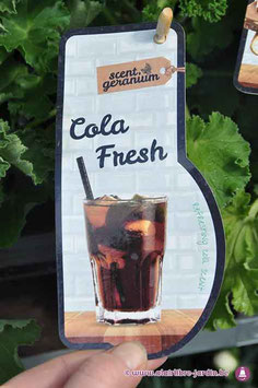 Pelargonium Cola sent