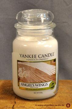 Angel's Wings YK